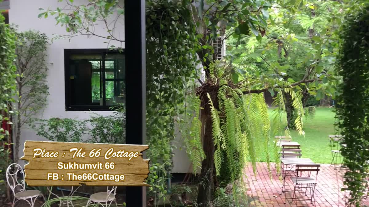 """The 66 Cottage"" คาเฟ่ในสวนสวยสไตล์อังกฤษ"