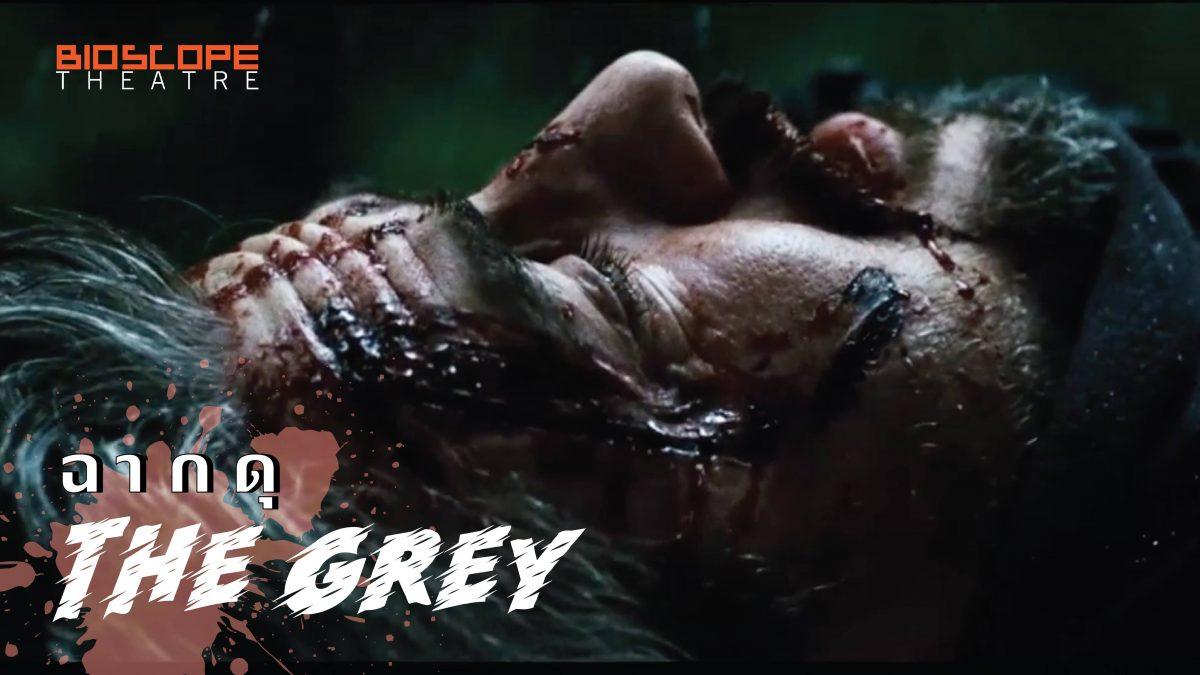 ฉากดุ The Grey